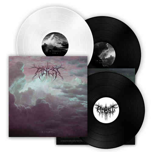 ANCST 'In Turmoil' LP