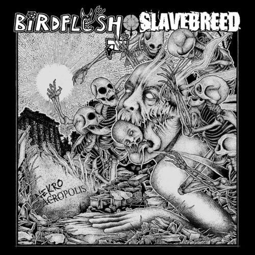 BIRDFLESH | SLAVEBREED Split 7""