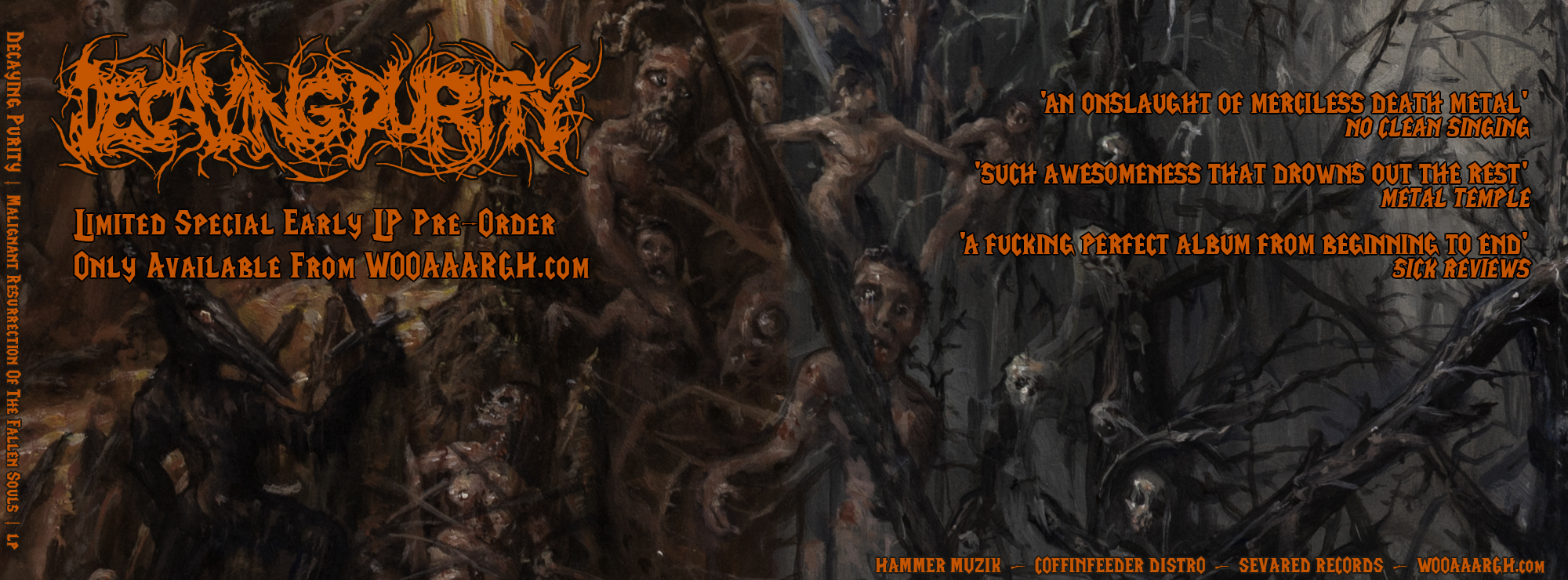 Decaying_Purity_banner_LP_1.jpg